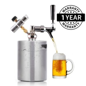 pressurized beer keg system